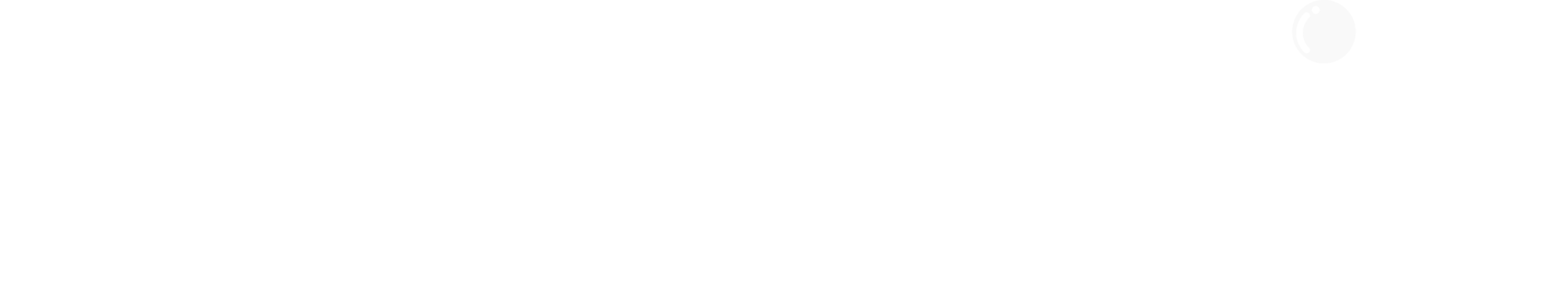 Washbear Studio Logo